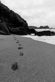 Footprints, Porthcurno