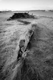 Wooden Wreck