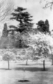 Buscot Park, Oxfordshire