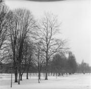 Snow on Henbury Golf Course