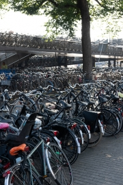 Bikes at Amsterdam Station