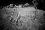 Gite Grounds