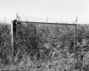 Aust Gate