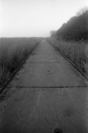 Misty causeway