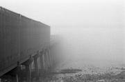Vanishing into the fog