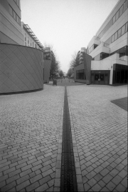 Cathedral Walk