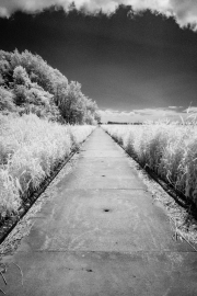 Causeway (IR)