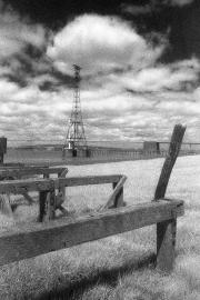 Pier & pylon