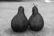 Wicker pears