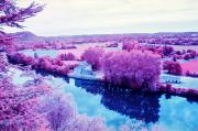 River Lot , colour infra-red film