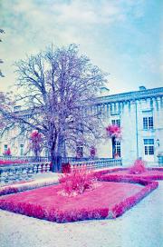 Marie de Fumel, colour infra-red film