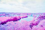 Fumel & River Lot, colour infra-red film