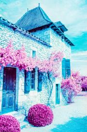 Gite, colour infra-red film