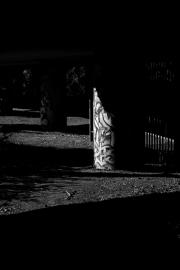 Column in Shadow