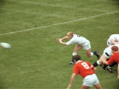 Rugby - Internationals