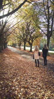 Photographing the autumn colours