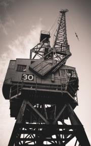 Crane 30