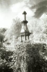 Overgrown Graves