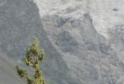 La Maije Glacier