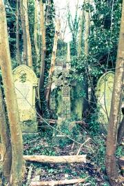 Overgrown Grave