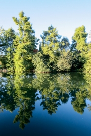 Charentes Reflection